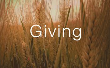 Giving in Wheat