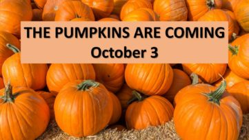 Pumpkins Are Coming