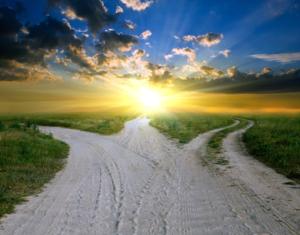 Three Path Choice